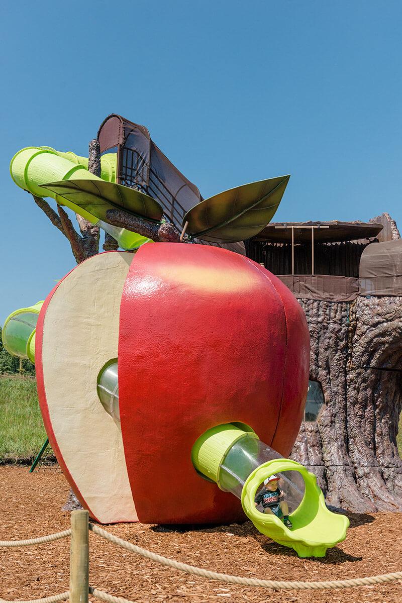 Sliding down the apple worm slide