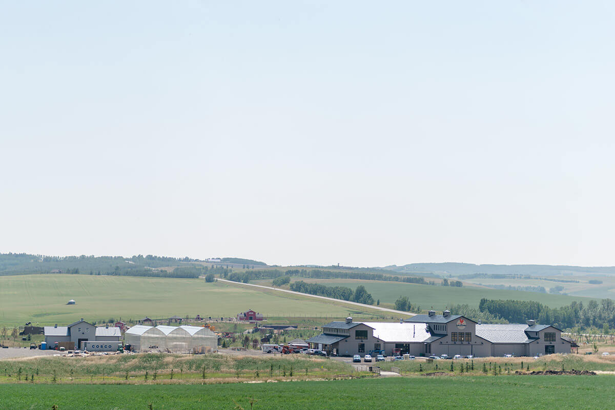The grounds of Granary Road south of Calgary