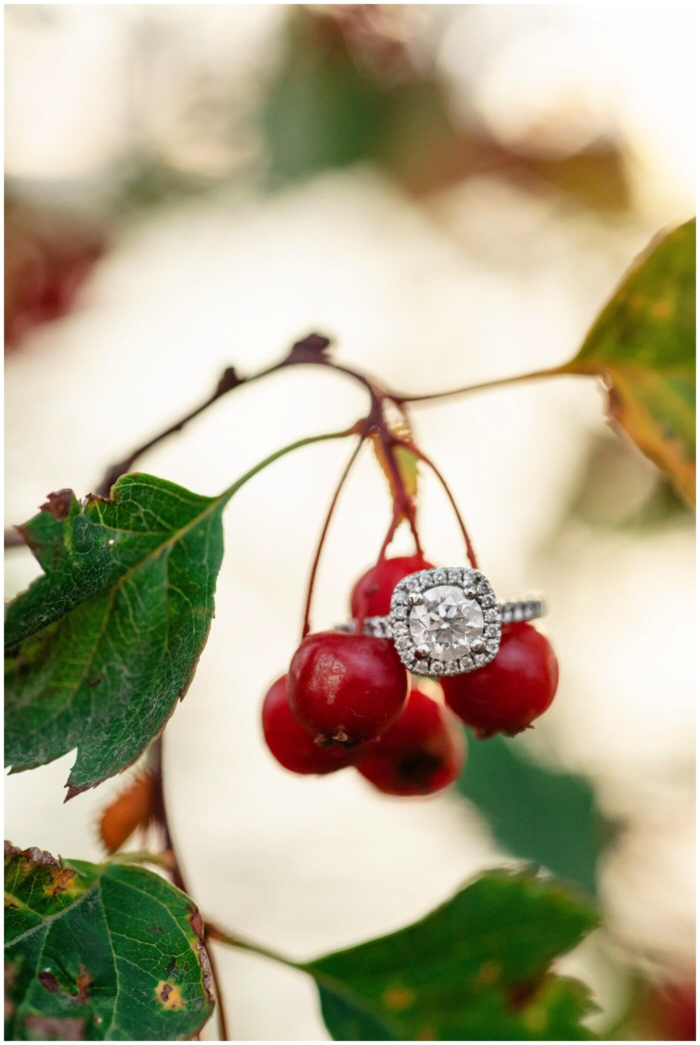 Regina-Engagement-Photography-009-Tim-Jennelle-Engagement-ring-on-berry-branch