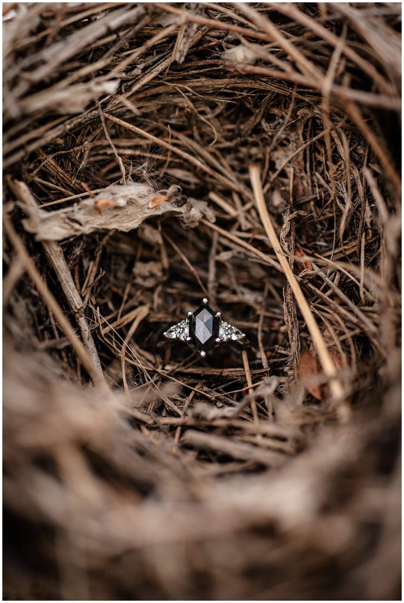 Regina Engagement Photography - Stephen & Sarah - 005 - Birds Nest Engagement Ring